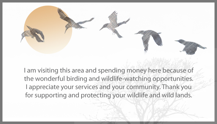 Part 3: Our Economic Potential As Birders & Wildlife Watchers