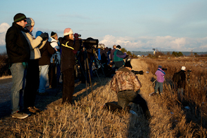 Wildlife Photography Ethics Matter