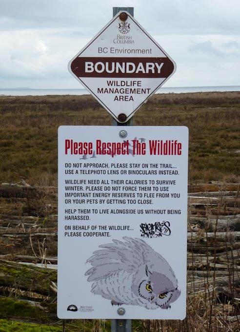 Snowy Owl Warning Sign at Boundary Bay