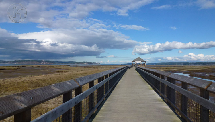 Nisqually National Wildlife Refuge Boardwalk