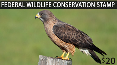 Support a New Wildlife Conservation Stamp