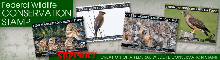The Wildlife Conservation Stamp of the Future