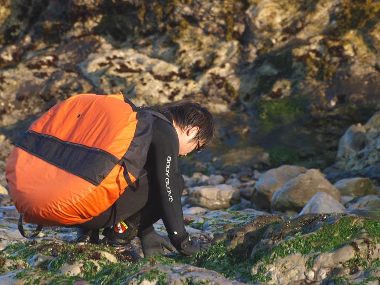 Abalone Diver on Mendocino Coast