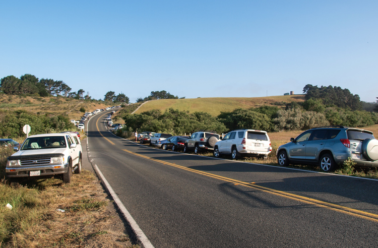 Cars of Abalone Divers on Mendocino Coast