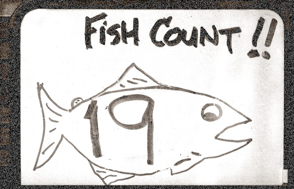 fishcount19-600