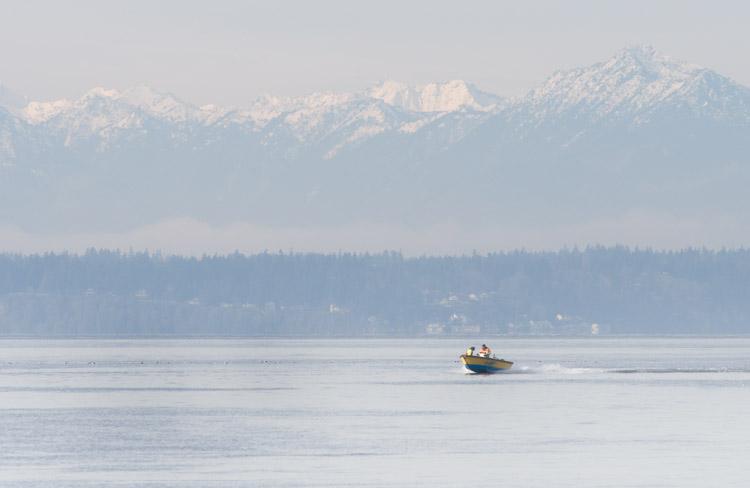 Grebes + Boat - ©ingridtaylar