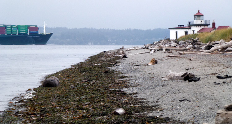 West Point Lighthouse and container ship at Discovery Park Seattle